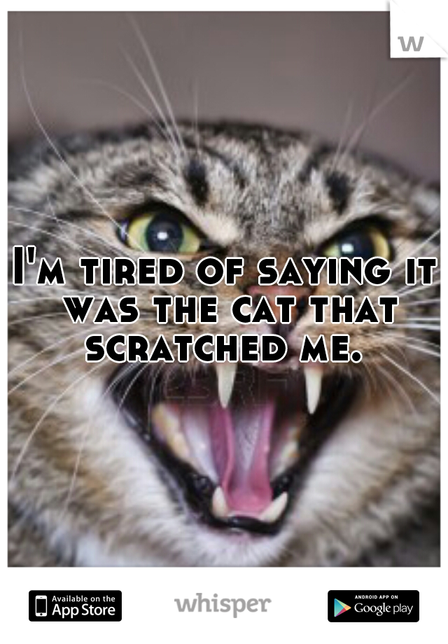 I'm tired of saying it was the cat that scratched me.