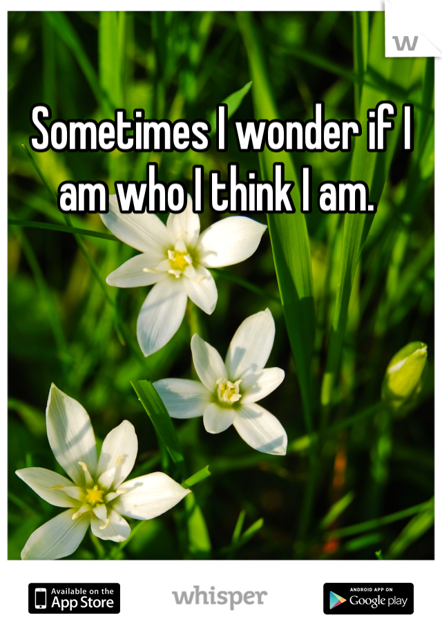 Sometimes I wonder if I am who I think I am.