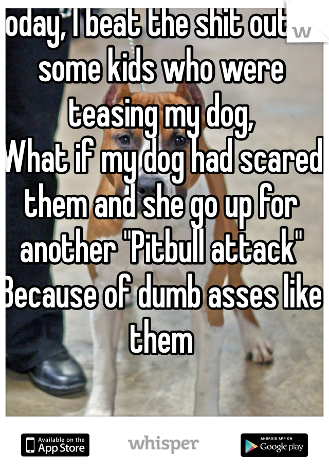 "Today, I beat the shit out of some kids who were teasing my dog, What if my dog had scared them and she go up for another ""Pitbull attack"" Because of dumb asses like them"