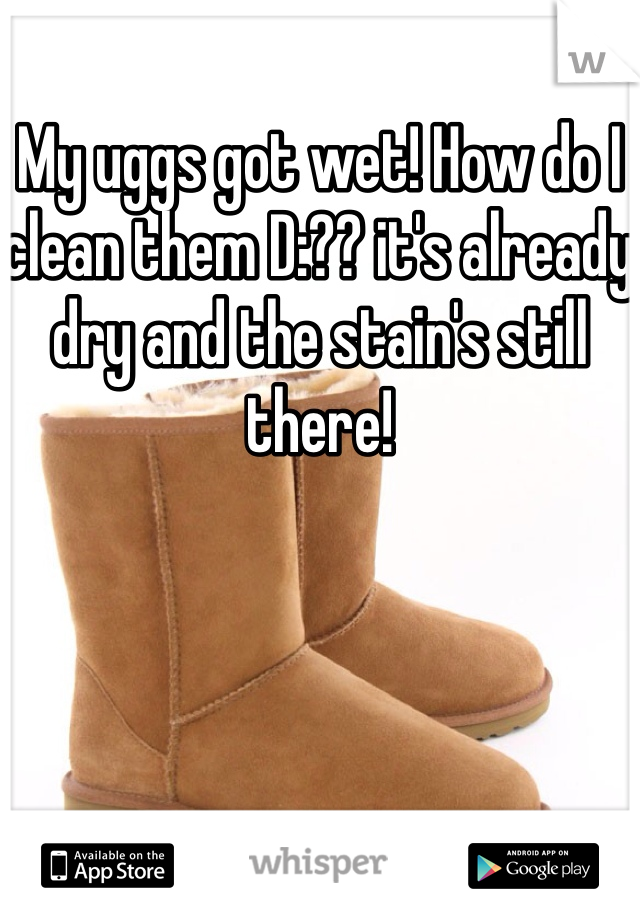 My uggs got wet! How do I clean them D:?? it's already dry and the stain's still there!