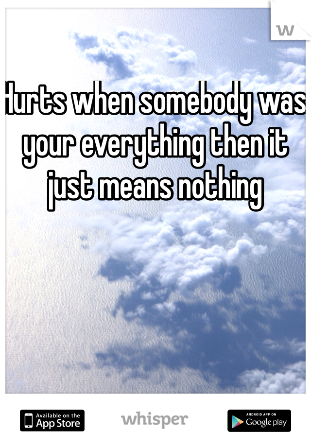 Hurts when somebody was your everything then it just means nothing