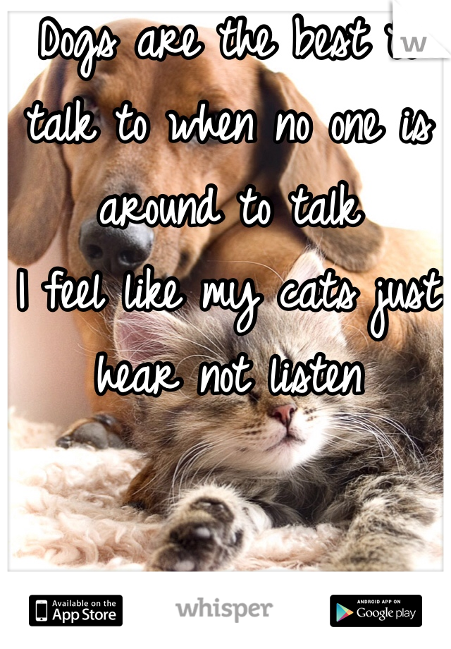 Dogs are the best to talk to when no one is around to talk  I feel like my cats just hear not listen