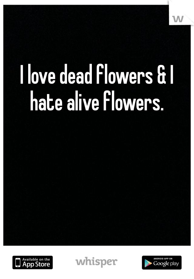 I love dead flowers & I hate alive flowers.