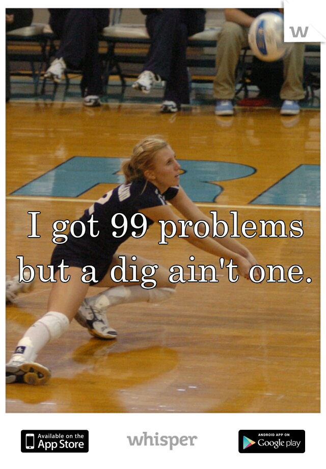 I got 99 problems but a dig ain't one.