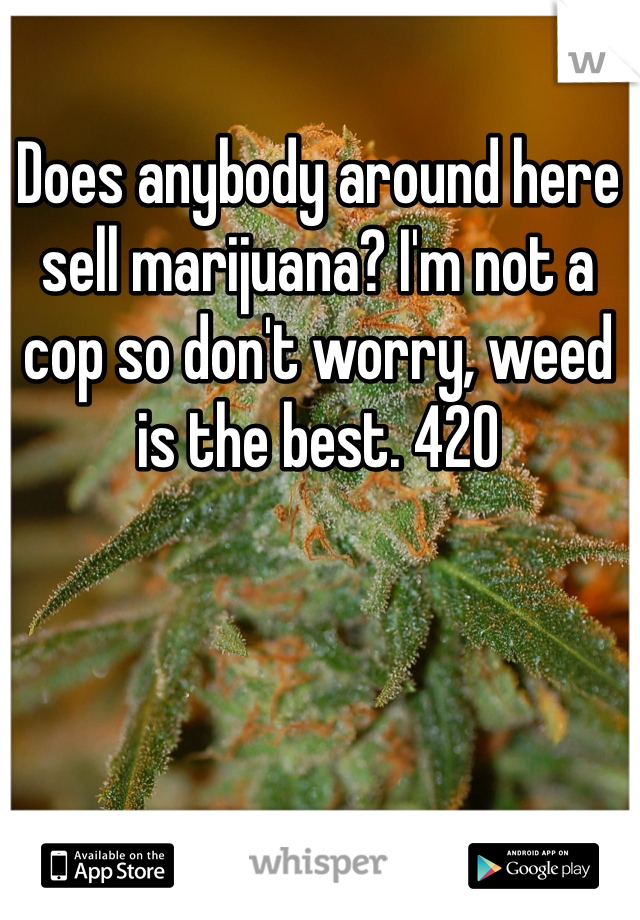 Does anybody around here sell marijuana? I'm not a cop so don't worry, weed is the best. 420