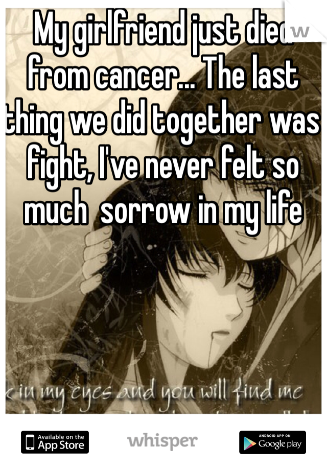 My girlfriend just died from cancer... The last thing we did together was fight, I've never felt so much  sorrow in my life