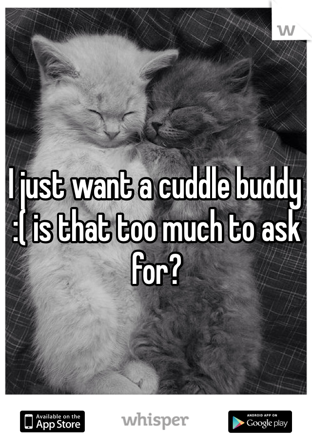 I just want a cuddle buddy :( is that too much to ask for?