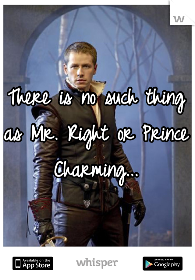 There is no such thing as Mr. Right or Prince Charming...