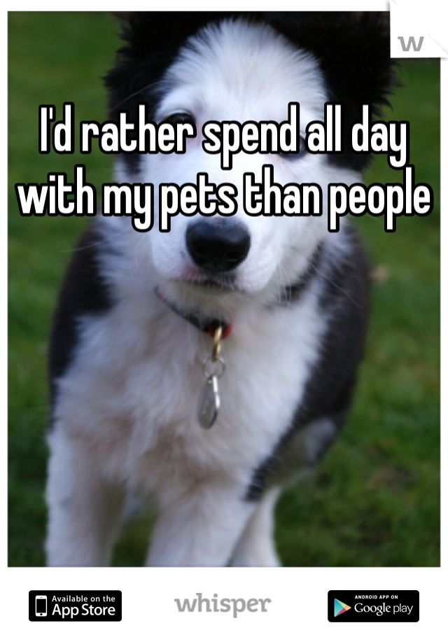 I'd rather spend all day with my pets than people
