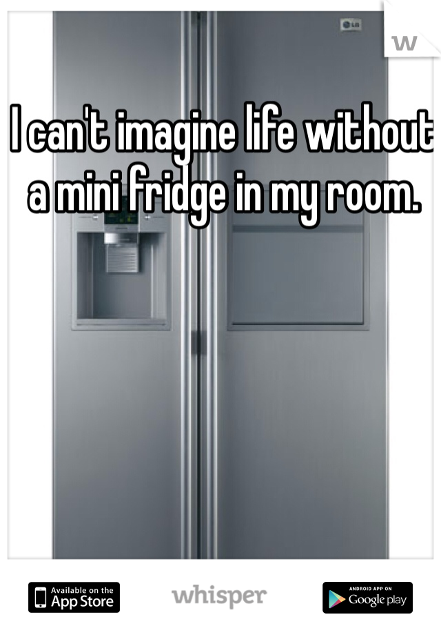 I can't imagine life without a mini fridge in my room.