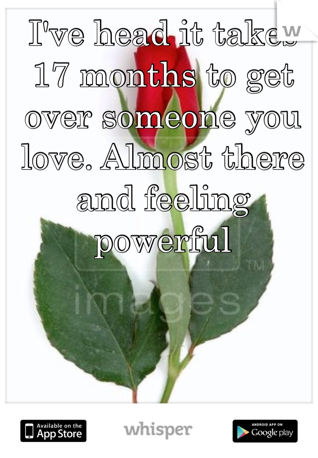I've head it takes 17 months to get over someone you love. Almost there and feeling powerful