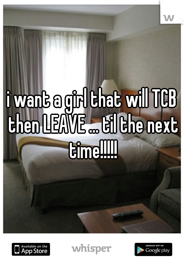 i want a girl that will TCB then LEAVE ... til the next time!!!!!