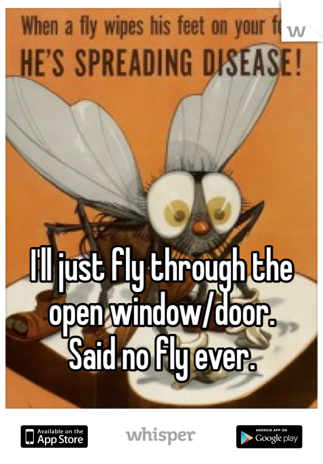 I'll just fly through the open window/door. Said no fly ever.