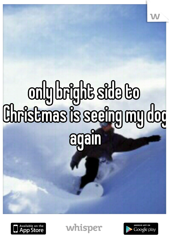 only bright side to Christmas is seeing my dog again
