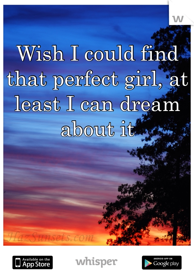 Wish I could find that perfect girl, at least I can dream about it