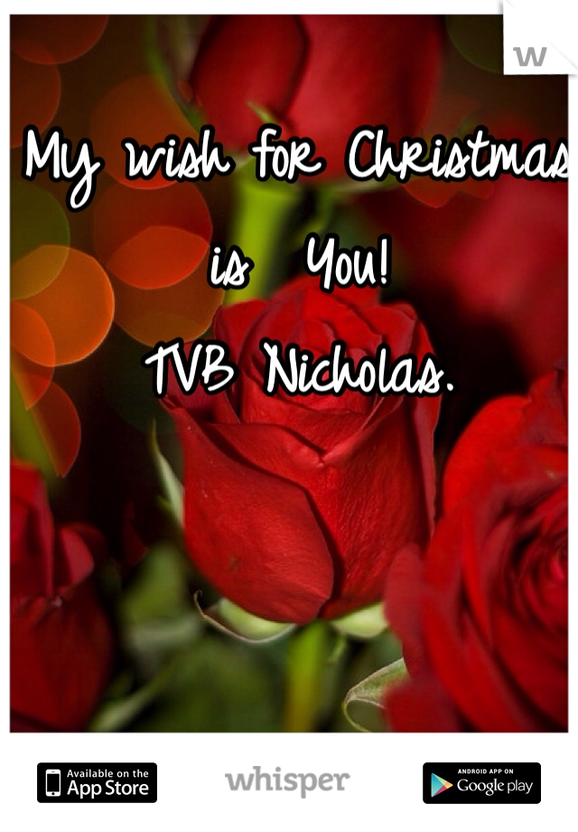 My wish for Christmas is  You!  TVB Nicholas.