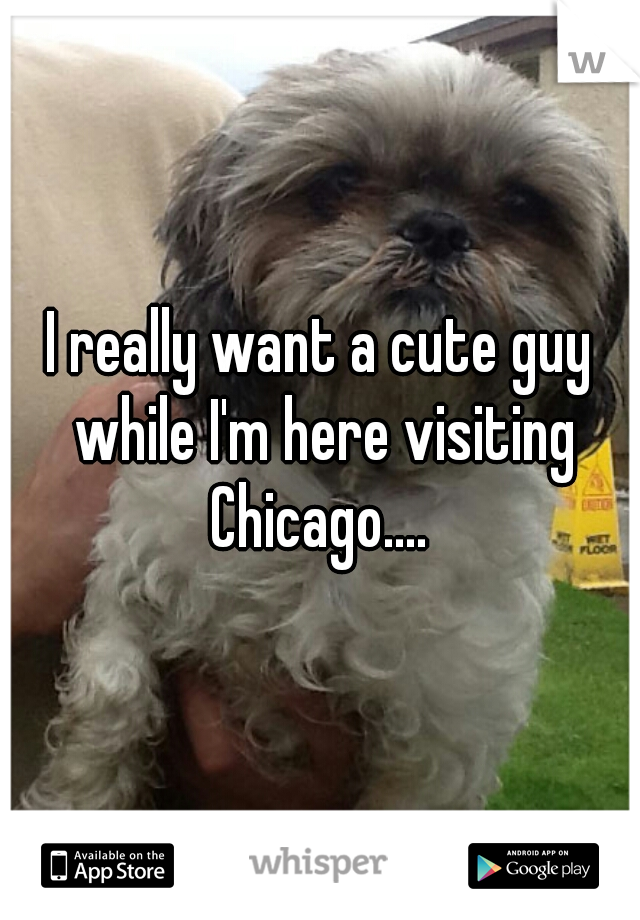 I really want a cute guy while I'm here visiting Chicago....