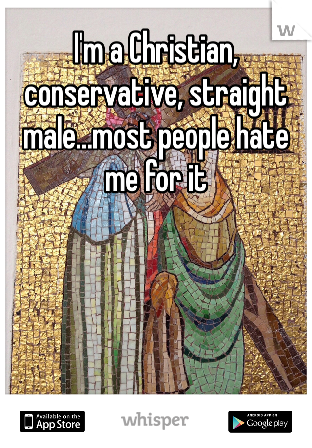 I'm a Christian, conservative, straight male...most people hate me for it