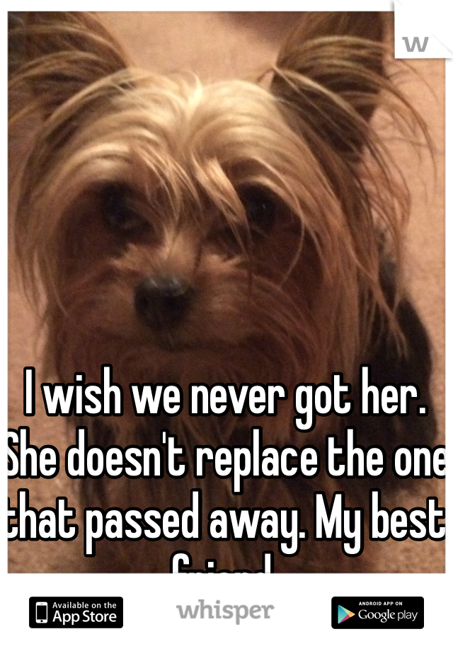 I wish we never got her. She doesn't replace the one that passed away. My best friend.