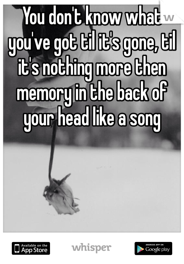 You don't know what you've got til it's gone, til it's nothing more then memory in the back of your head like a song
