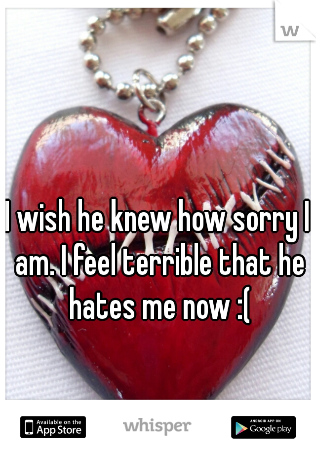 I wish he knew how sorry I am. I feel terrible that he hates me now :(