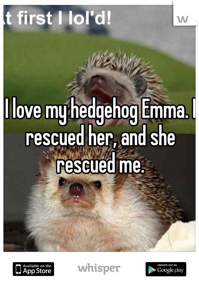 I love my hedgehog Emma. I rescued her, and she rescued me.