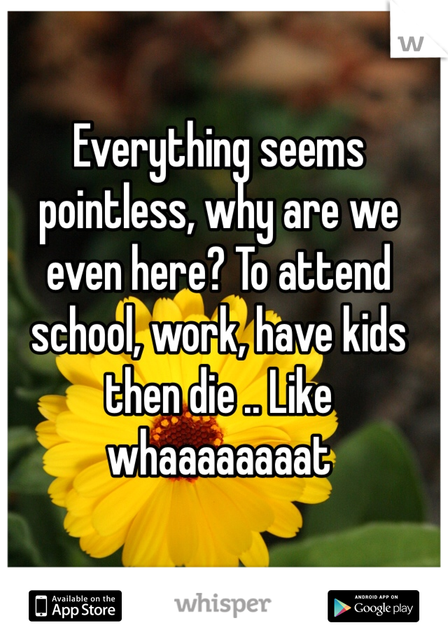 Everything seems pointless, why are we even here? To attend school, work, have kids then die .. Like whaaaaaaaat
