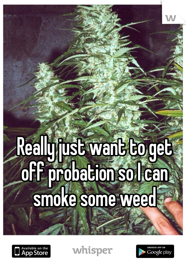 Really just want to get off probation so I can smoke some weed