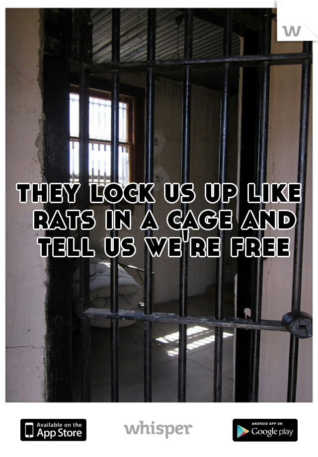 they lock us up like rats in a cage and tell us we're free