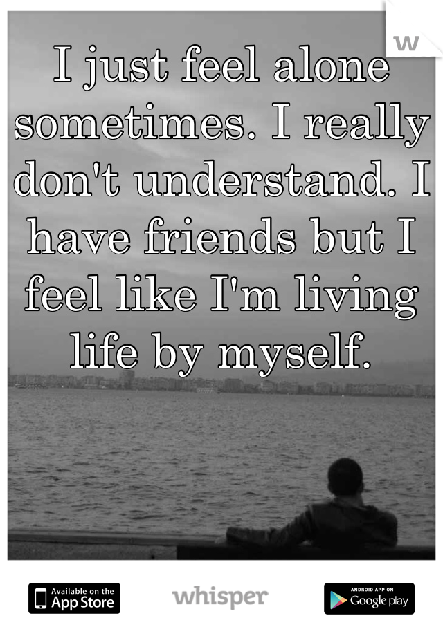I just feel alone sometimes. I really don't understand. I have friends but I feel like I'm living life by myself.