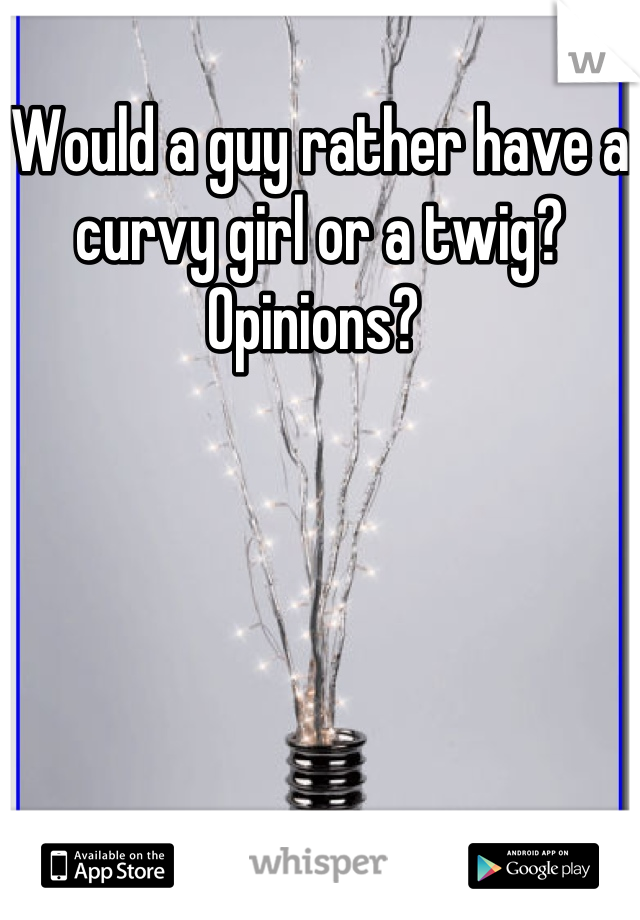 Would a guy rather have a curvy girl or a twig? Opinions?