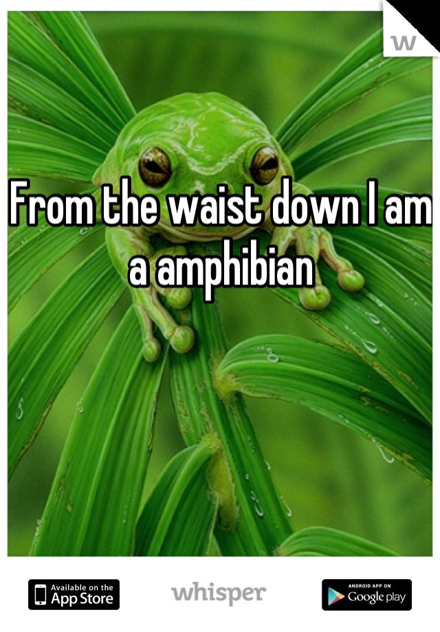 From the waist down I am a amphibian