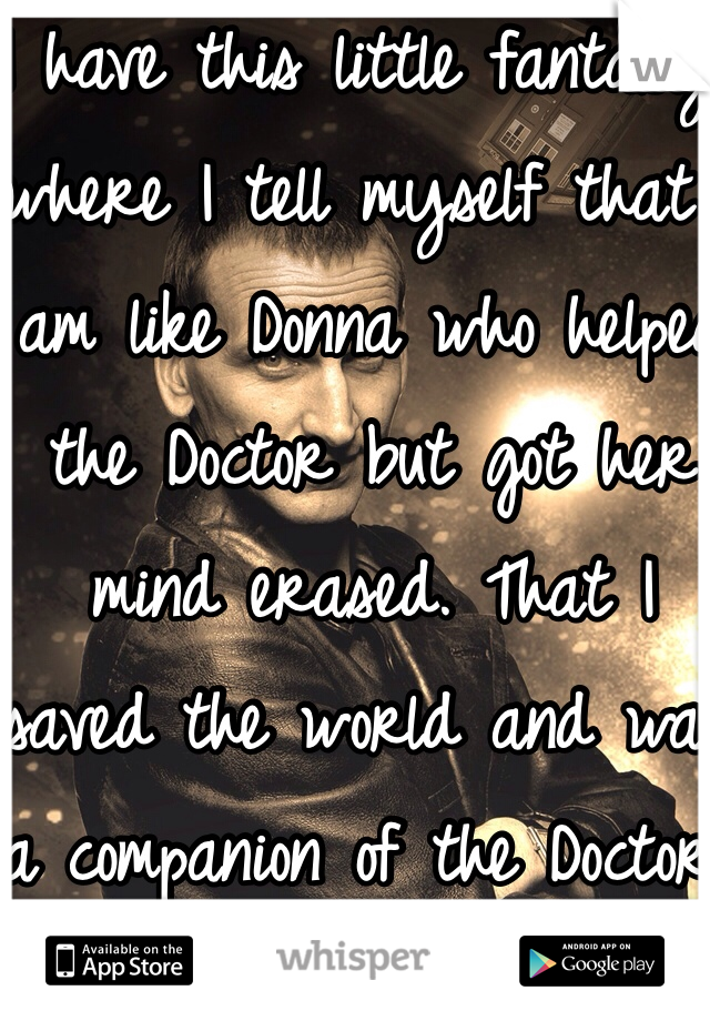 I have this little fantasy where I tell myself that I am like Donna who helped the Doctor but got her mind erased. That I saved the world and was a companion of the Doctor. I just can't remember.