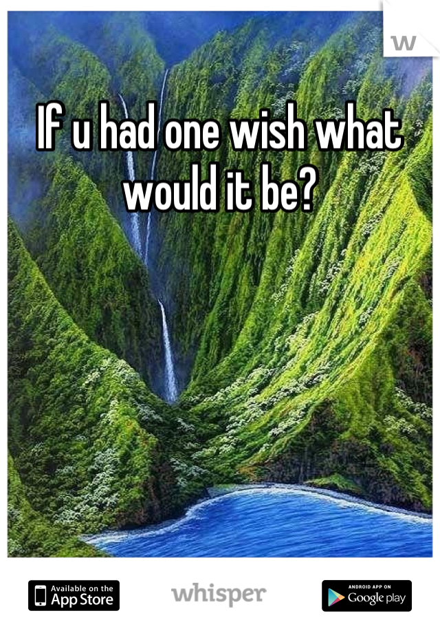 If u had one wish what would it be?