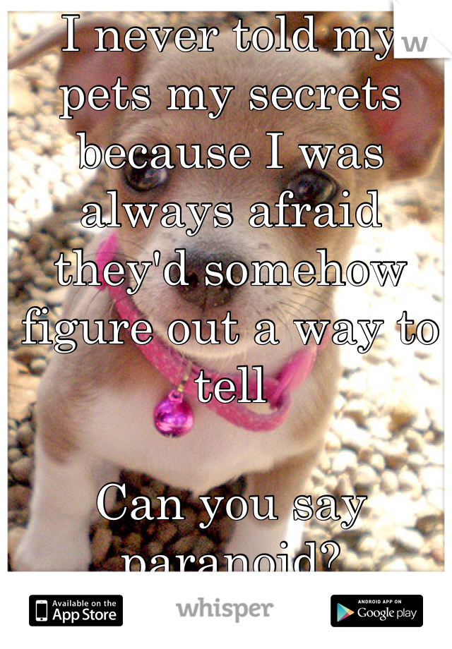 I never told my pets my secrets because I was always afraid they'd somehow figure out a way to tell   Can you say paranoid?