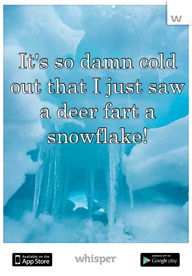 It's so damn cold out that I just saw a deer fart a snowflake!