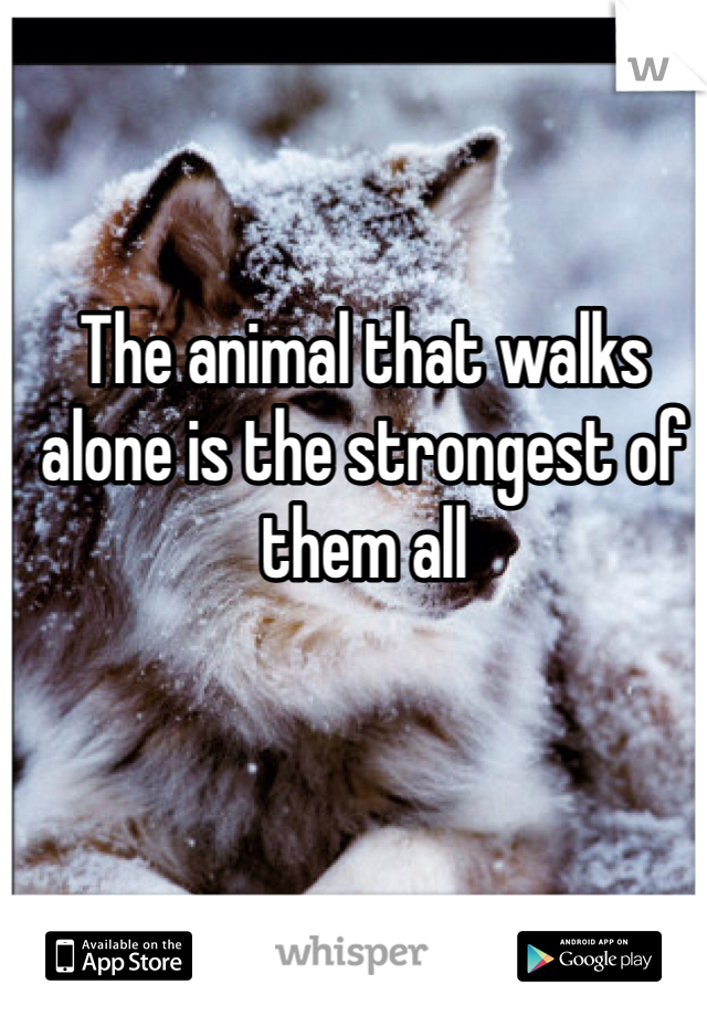 The animal that walks alone is the strongest of them all
