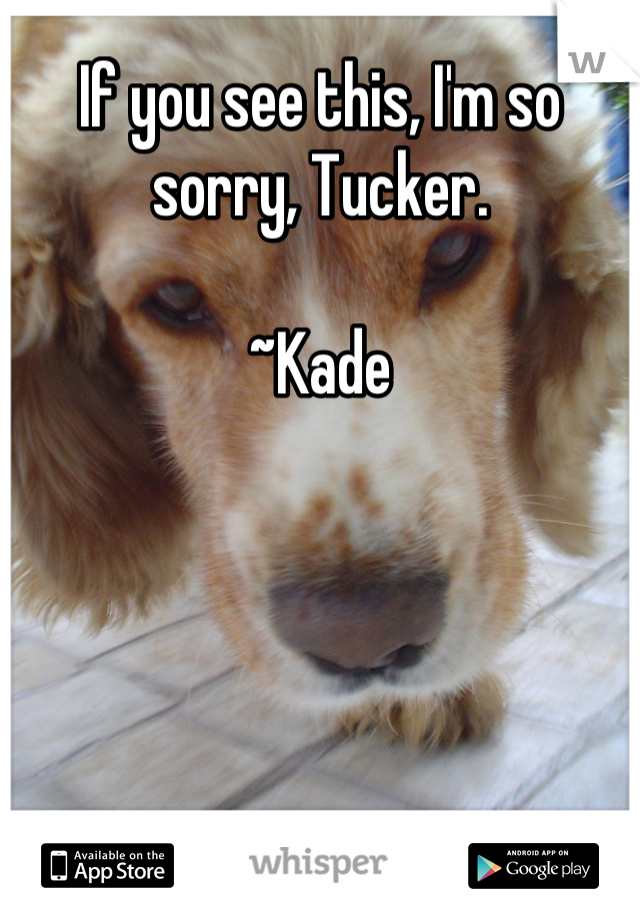 If you see this, I'm so sorry, Tucker.  ~Kade