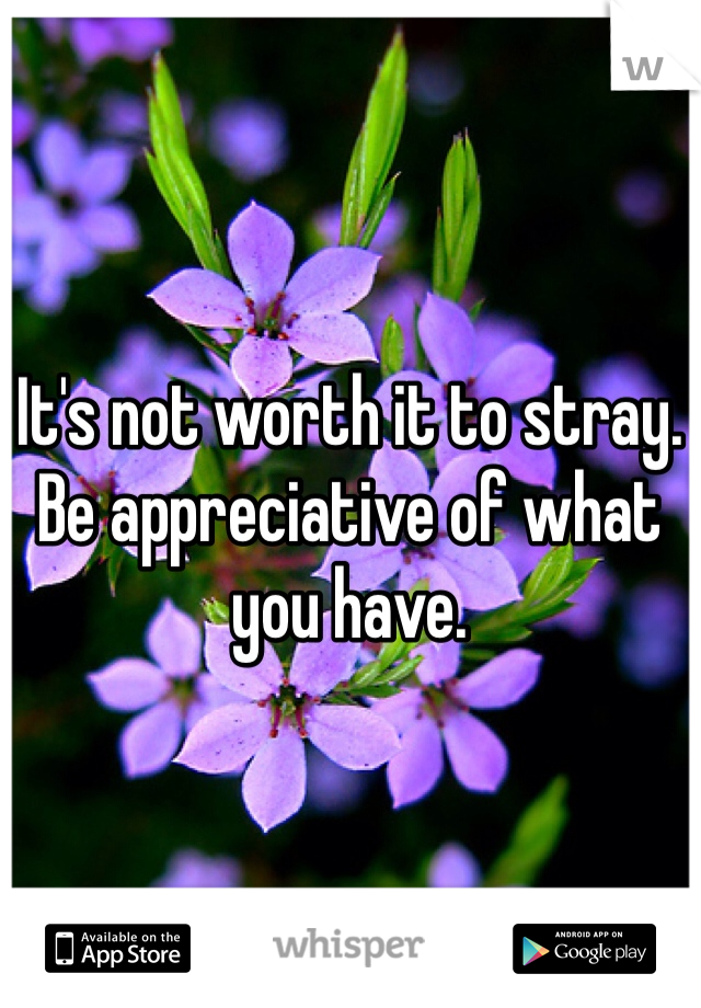 It's not worth it to stray. Be appreciative of what you have.