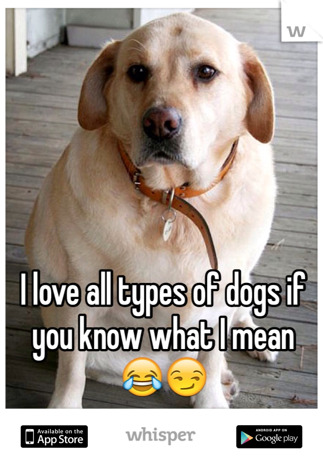 I love all types of dogs if you know what I mean 😂😏