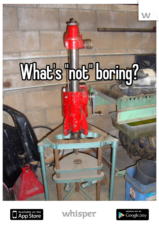 """What's """"not"""" boring?"""