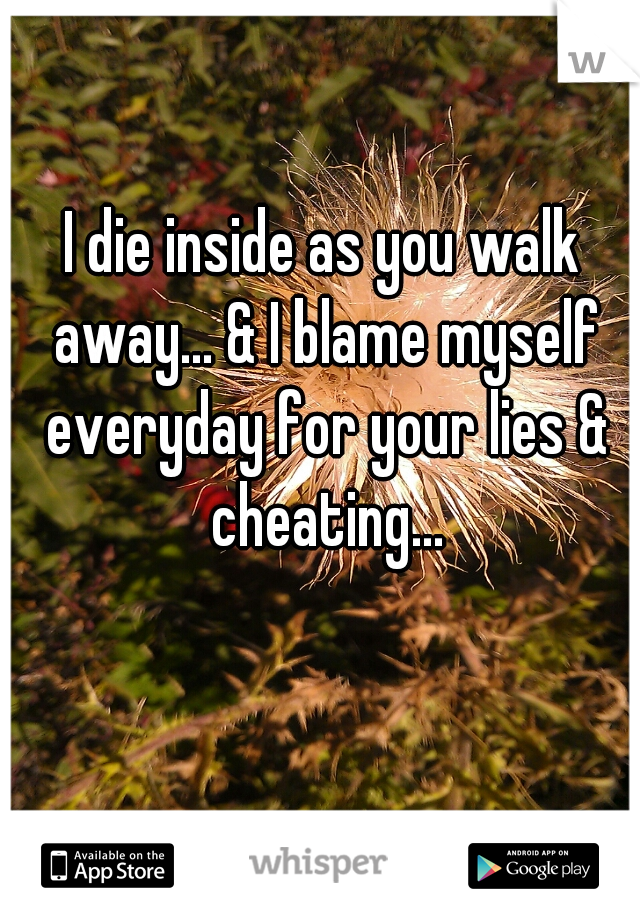 I die inside as you walk away... & I blame myself everyday for your lies & cheating...
