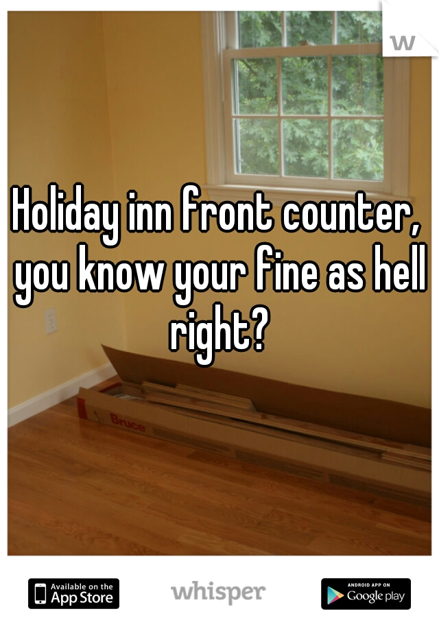 Holiday inn front counter, you know your fine as hell right?