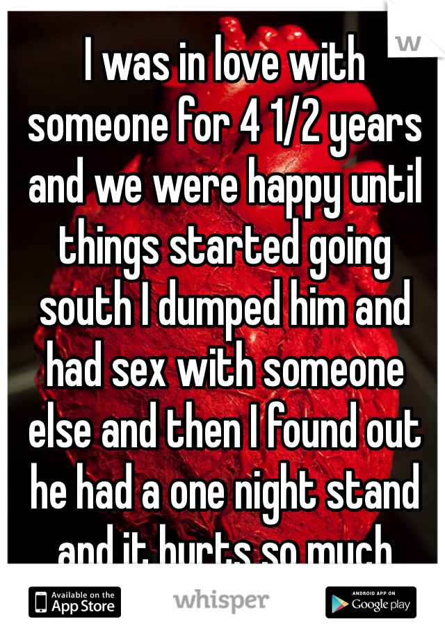 I was in love with someone for 4 1/2 years and we were happy until things started going south I dumped him and had sex with someone else and then I found out he had a one night stand and it hurts so much