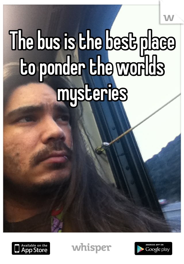 The bus is the best place to ponder the worlds mysteries