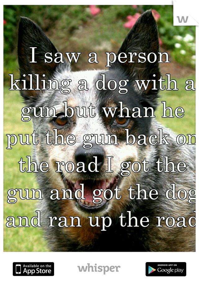 I saw a person killing a dog with a gun but whan he put the gun back on the road I got the gun and got the dog and ran up the road