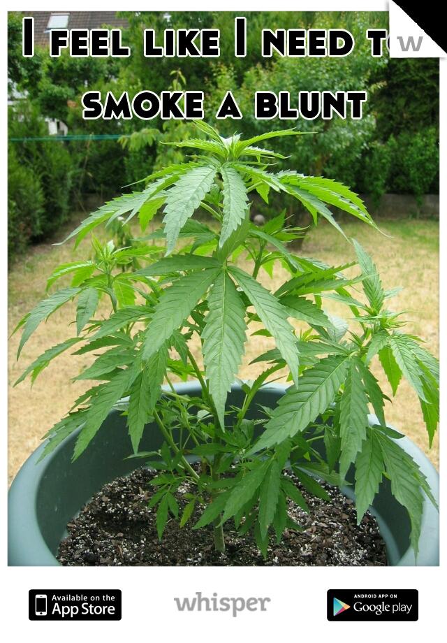 I feel like I need to smoke a blunt