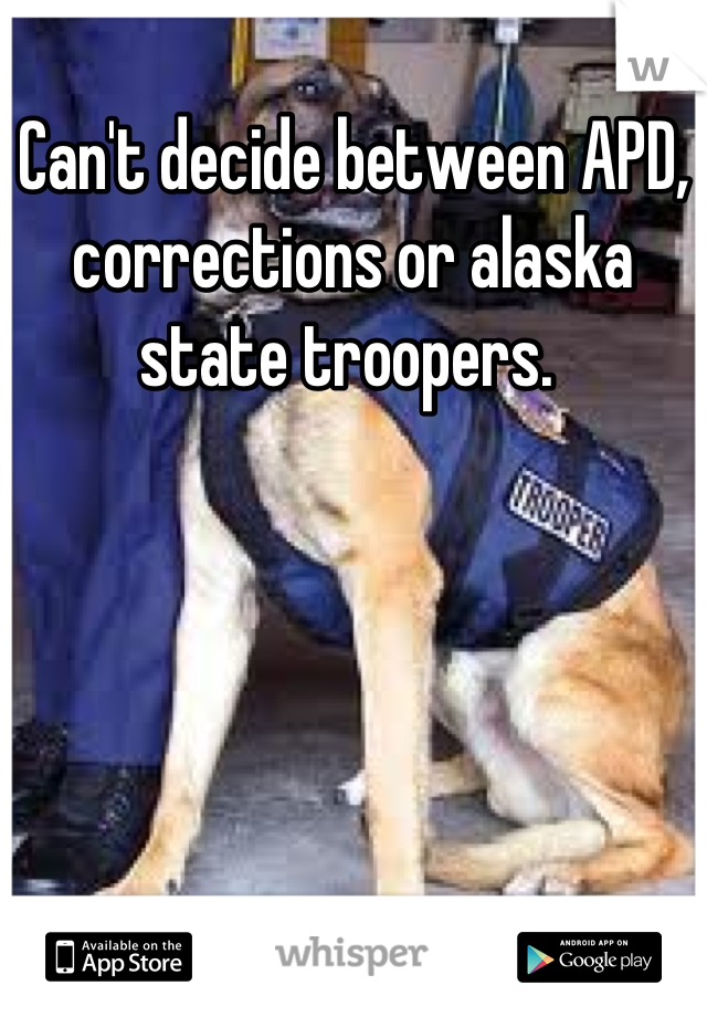 Can't decide between APD, corrections or alaska state troopers.