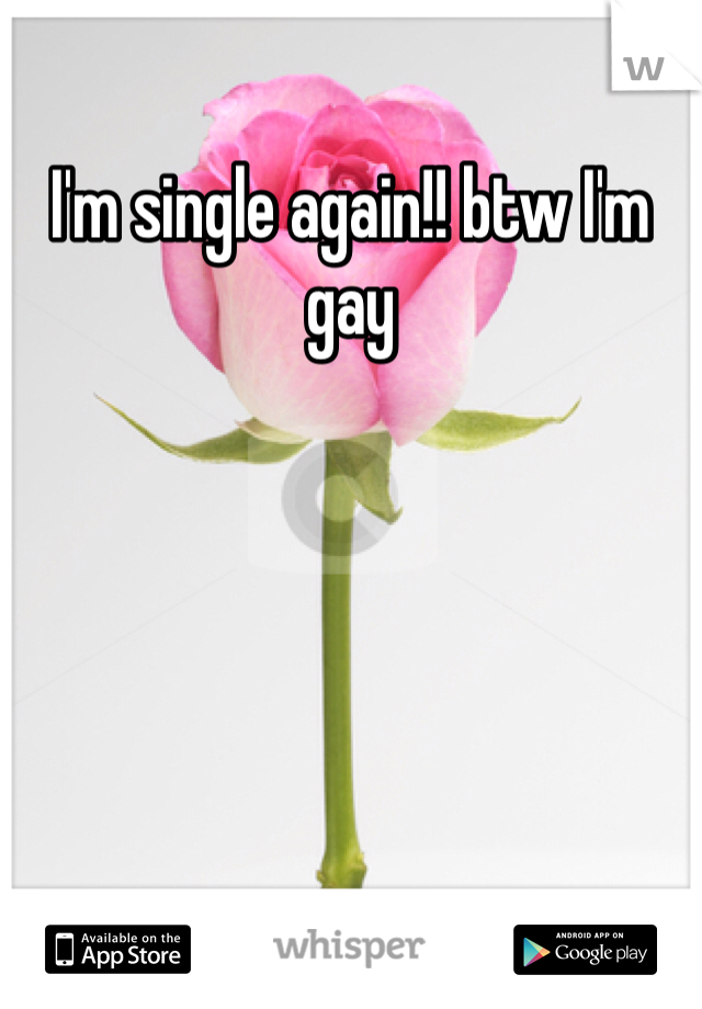 I'm single again!! btw I'm gay