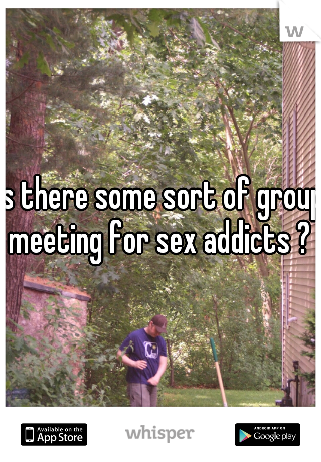 is there some sort of group meeting for sex addicts ?